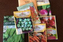 Grow Organic Veggies and Fruit / Growing Clean Organic Nutrient Dense Food In Your Backyard