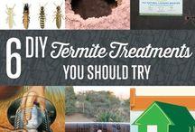 Termite treatment diy