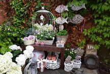Lisa 's cosey garden