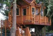 Tree Houses / by Christine Thurston