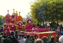 Le Corso du Mimosa / Un défilé d'une douzaine de chars magnifiquement décorés de fleurs fraîches et de mimosas, des fanfares rythment cet événement grandiose.Avec en clôture, la traditionnelle bataille de fleurs Info http://www.bormeslesmimosas.com/fr/agenda/corso-fleuri.php