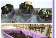DIY balcony gardening tips | DIY balkon tuin tips / Ideeën, voorbeelden en tips voor balkontuinieren | Ideas, examples and tips for balcony gardening