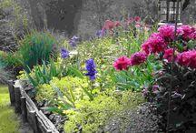 Jardineria / Varios