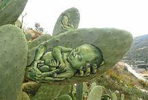 Acının Sanatı, Kaktüslerde Vücut Buluyor / Filistin'in yaşadığı acıları, kaktüs tuvallere resmeden sanatçı Ahmed Yasin..  Kaynak / Source : al-monitor.com  (Deniz Humması - http://wp.me/p7eZYA-yM)