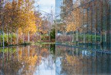 Jaqua Center / WERK | Charles Anderson Landscape Architecture