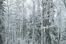 ☆°°••☆ Schnee☆☆°°•°°☆♡,
