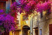 provans cestování /  návrat do Provence