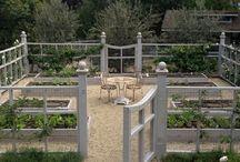 ogród warzywny i ziołowy