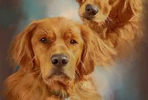 """Pet Portraits / Watercolor, digital and photographic images of dogs, cats, horses, miniature donkeys and other pets painted by Susie """"Sami"""" Myers"""