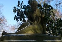 Cemetery  / by Tina Krueger