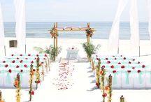 A Sand Dollar Beach Wedding Package / Big Day Weddings, Beach Weddings, Sand Dollar Beach Wedding Package, Wedding Packages, Alabama Beach Weddings, Gulf Coast Weddings, Orange Beach Alabama, Gulf Shores Alabama