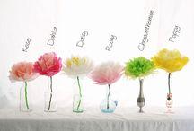 DIY Craft & party decorations