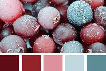 COLORS | Wine
