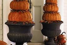 Holidays ----- Halloween, Fall & Thanksgiving  / by Susan Wodicka