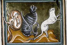 Magick: Macka / Cats  / (Spirit) / by LA