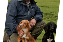 Working dogs and gun dogs  / by Eternity Images