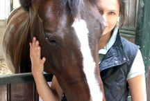 Lonneke's Life with Horses / Here you find everything about my horses, and everything that has to do with my equestrian life.