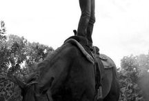 Things I want to do with my horse gypsy