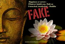 Fake Buddha Quotes / Fake Buddha quotes from around the web with a look at why they are not from the Buddha.  By Bodhipaksa / by Wildmind Meditation