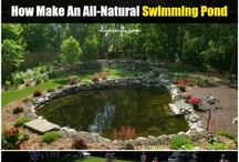 Water features and ponds / Ideas for water features
