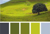 Farge og form
