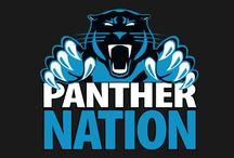 Carolina Panthers / All things Carolina Panthers