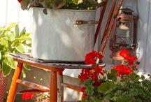 Kevätistutukset / Kevätistutuksia ja ideoita mukavaan ja vihreään terassinlaittoon.
