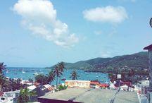 Randonnée en  Martinique / La Martinique regorge de nombreux endroits pour effectuer de la la randonnée plus fabuleux les uns que les autres