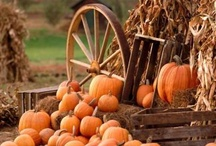 Fall Ideas! / by Debbie Bethurum
