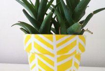 DIY - planters