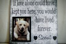 Pet Memorials / Pet memorial ideas and grief resources for experience the loss of a beloved pet