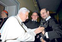 Benedict XVI + pisicile