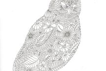 animale, păsări, insecte / desene de colorat