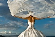 Dream Wedding / by Amy Payne