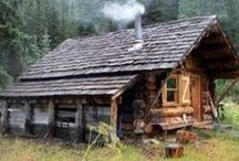 Home in forest
