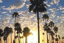 California dreamin' / by Maren Custer