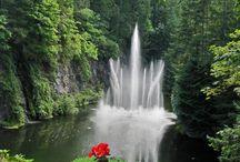 Fabulous Fountains / by Melanie Cuevas