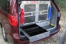 doggie car