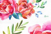 Pop Fizz Floral