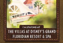 Disney Parks-Hotels