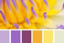 renkler ve uyumlari