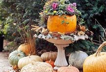 Thanksgiving and Fall Decor / Fall, autumn, thanksgiving / by Diane Bodeker Hollister