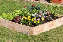 carré potager / La culture au carré est une méthode durable de jardinage, en harmonie avec la nature, inspirée des éco systèmes.