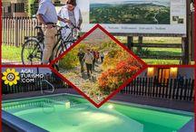 Agriturismo Friuli Venezia Giulia - Farmhouses / Questa fantastica regione é il top in quanto a relax, salute e soprattutto aria pulita. Tantissime le escursioni possibili e le località da visitare. Buon viaggio !! #Friuli #Nord #regione #Italy #nature #benessere #relax #activities #green #wealth #vivisano