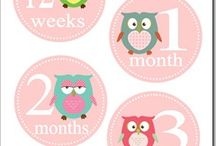 Stickers baby monthly