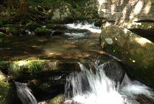 The river / Meditation
