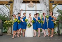 Bride and Her Girls at MSF / by Mint Springs Farm