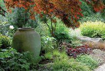 my mediterranean garden