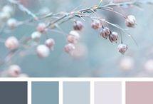 Kleurenmeter