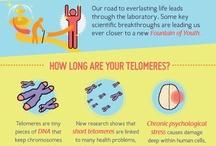 Wellness: Infographics